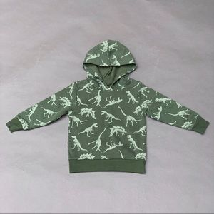 H&M Green Boys Dinosaur Hoodie